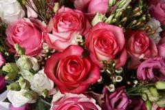 Enorm bukett av rosor Royaltyfria Bilder
