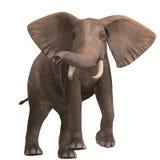 enorm elefant royaltyfri illustrationer