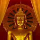 Enorm guld- buddha staty i fyrkantigt bildformat Royaltyfri Foto