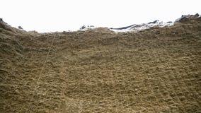 Enorm höstack footage Rå enorm vägg av komprimerat hö för materiel i vintern för matande nötkreatur boskap Jordbruk royaltyfri fotografi
