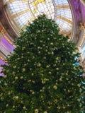 Enorm julgran i en galleria Arkivbild