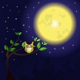 Enorm måne och uggla på trädet Royaltyfria Bilder