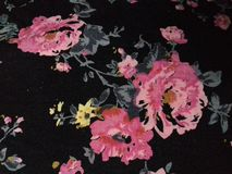 Enorm rosa blom- modell Fotografering för Bildbyråer