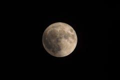 Enorm sällsynt toppen måne över Black Sea Störst toppen måne efter 1948 November 14th, 2016 Arkivfoto
