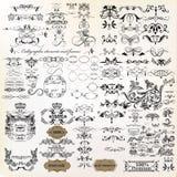 Enorm samling av calligraphic krusidullar för vektor royaltyfri illustrationer