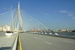 enorm väg för bro Royaltyfria Foton