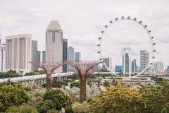 Enorma ferris rullar in Singapore Royaltyfria Bilder