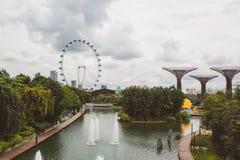 Enorma ferris rullar in Singapore Royaltyfri Foto