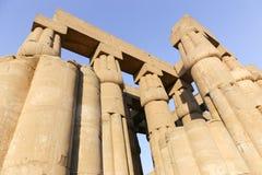 Enorma kolonner av den Luxor templet - Egypten Royaltyfri Foto