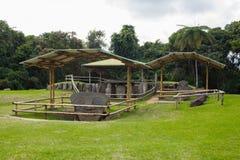 Enorma San Agustin Archeological parkerar, Huilla, Colombia Unescovärldsarv Royaltyfri Fotografi