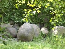 Enorma stenar i röjningen Royaltyfria Bilder