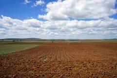 Enorma vita luftmoln ligger på plogad brun jord Royaltyfri Bild