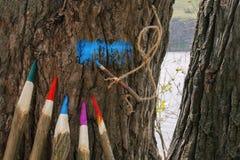 Enorme farbige Bleistifte und ein Seilmann Stockfotografie