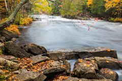 Enorme Flusssteine und bunter Fallwald auf einem Flussufer Lizenzfreie Stockfotos
