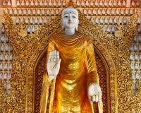 Enorme Goldstatue der Stellung von Buddha im buddhistischen Tempel Lizenzfreie Stockbilder