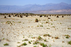 Enorme Woestijn Royalty-vrije Stock Foto