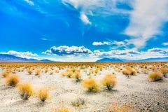 Enorme Woestijnweide dichtbij Doodsvallei Royalty-vrije Stock Afbeeldingen