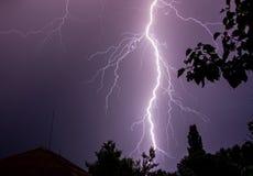 Enormer Blitz auf nächtlichem Himmel mit Baumschattenbildern Stockfotos