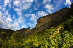 Enormer Felsen im Dschungel an einem sonnigen Tag stockbilder