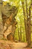 Enormer Flussstein im Wald im Leisten-Park Lizenzfreie Stockfotos