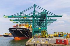Enormes Containerschiff lud mit Kränen im Antwerpen-Behälterausdruck Lizenzfreie Stockfotografie