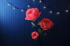 Enormes Wachstumsrosa blüht im Innenraum auf dem Hintergrund der blauen Wand mit Retro- Girlande Stockbild