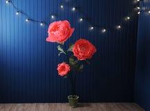 Enormes Wachstumsrosa blüht im Innenraum auf dem Hintergrund der blauen Wand mit Retro- Girlande Stockfoto
