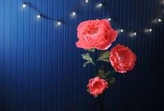 Enormes Wachstumsrosa blüht im Innenraum auf dem Hintergrund der blauen Wand mit Retro- Girlande Lizenzfreies Stockbild