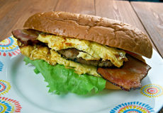 Enormous Omelet Sandwich Stock Photography