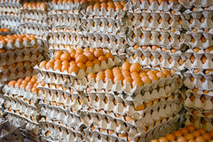 Enormous Stack of Egg Trays at an Asian Public Market. Many hundreds of fresh chicken eggs on display in trays at a public market in Southeast Asia Royalty Free Stock Images