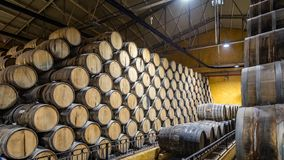 Free Enormous Stacks Of Oak Barrels Aging Tequila In Mexico Stock Image - 168122421