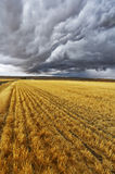 Enormous thundercloud royalty free stock photos