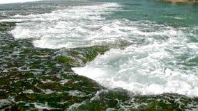 Enormt ändlöst flöde för havvågor över grön havsväxt lager videofilmer