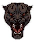 enraged головная пантера Стоковые Изображения