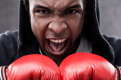 Enraged African American boxer. Enraged African  American boxer portrait. Concept of aggression and ways to cope with it Royalty Free Stock Photos