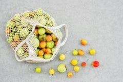 Enrede el bolso por completo de manzanas del jardín foto de archivo