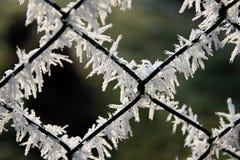 Enrede la cerca cubierta con helada con el fondo borroso en el invierno fotos de archivo libres de regalías