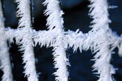 Enrede la cerca cubierta con helada con el fondo borroso en el invierno fotos de archivo