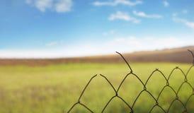 Enrede la cerca en el fondo de campos verdes foto de archivo libre de regalías