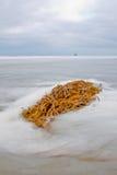 Enrede la mentira en la resaca de la playa del océano fotografía de archivo