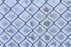 Enrede la red cubierta con la helada, estructura de la nieve imagen de archivo libre de regalías