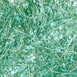 Enredo abstracto de la vid en fondo verde Imágenes de archivo libres de regalías