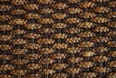 Enredo de bambú Imagen de archivo libre de regalías