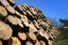 Enregistre le bois de chauffage Photo libre de droits