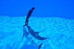 Enregistrement de Mondial dans Freediving - Simone Arrigoni Photographie stock libre de droits