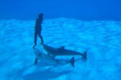 Enregistrements sous-marins Photographie stock libre de droits