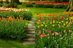 Enrolamento de pedra do trajeto em um jardim Fotografia de Stock Royalty Free