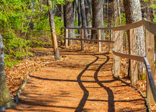 Enrolamento Forest Path Fence Imagens de Stock Royalty Free