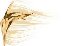 Enrole a planta (o vetor) ilustração royalty free
