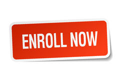 Enroll now red square sticker Royalty Free Stock Images